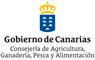 logo-gobcanarias-1